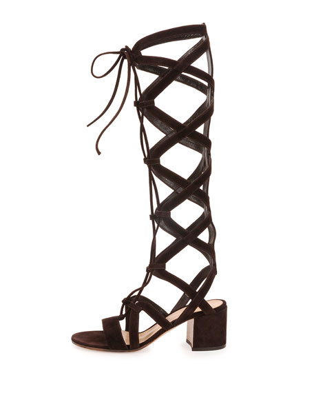 Knee-High Cutout Gladiator Sandal