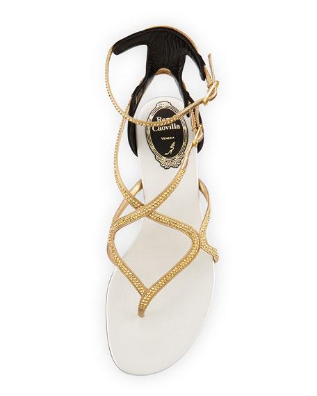 Rene Caovilla Crystal Strappy Flat Ankle-Wrap Sandal, Black