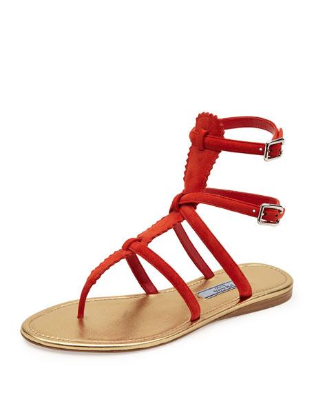 Prada Flat Suede Thong Gladiator Sandal, Red (Lacca)