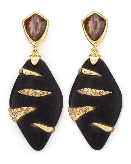 Durban Lucite Earrings, Black