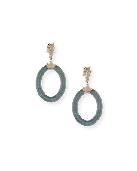 Forward-Facing Lucite Hoop Earrings