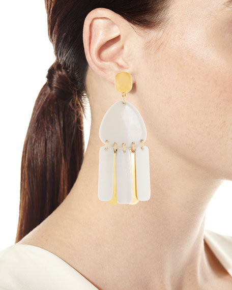 Bone Fringe Drop Earrings
