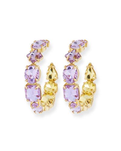 Isadora Crystal Hoop Earrings