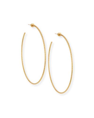 Donnie Hoop Earrings