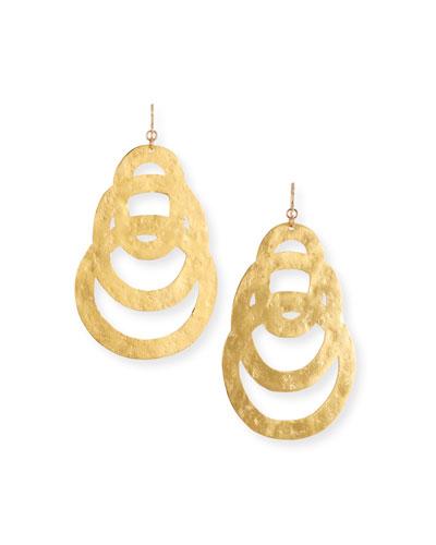 Flat Multi-Circle Earrings