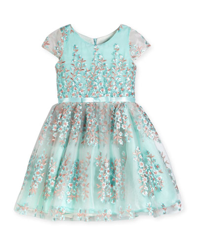 Cap-Sleeve Floral Embroidered Tulle Dress, Blue, Size 2-6