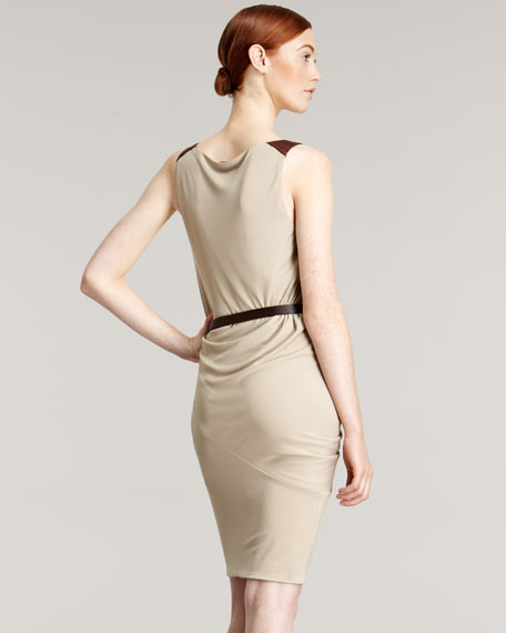 Draped Belted V-Neck Dress