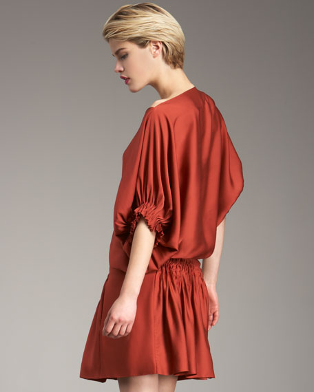 Handy Cinch-Waist Shirtdress