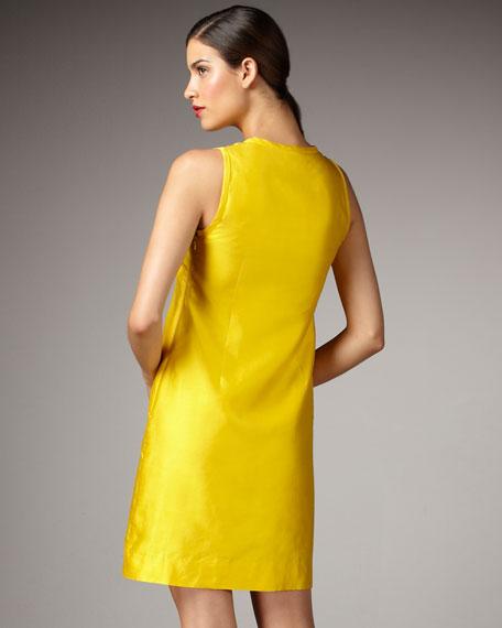 brenda ruffle-placket dress