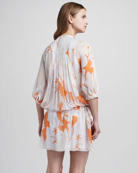 Desma Print Drop-Waist Dress