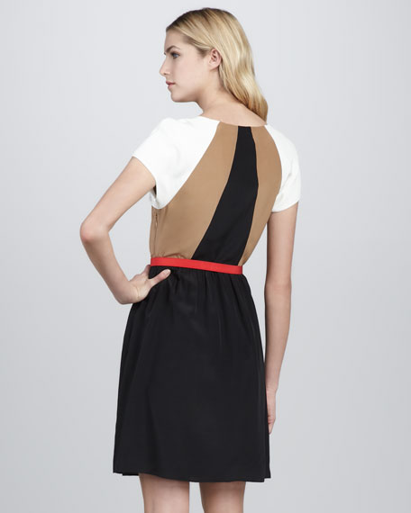 Art Critic Belted Dress