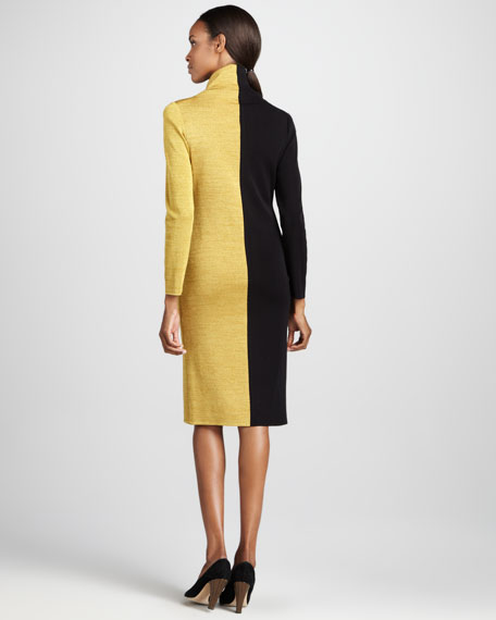 Colorblock Turtleneck Dress