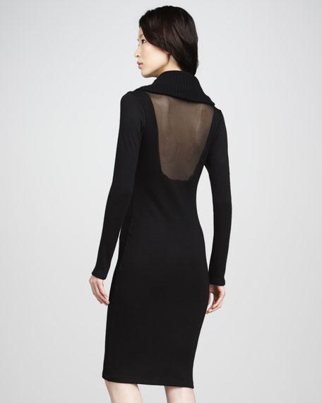 Audra Sheer-Back Dress