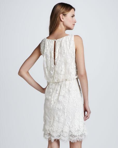 Denise Sleeveless Lace Dress