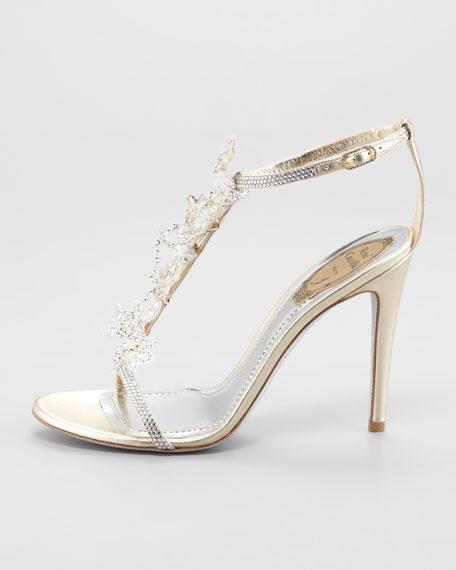 Rene Caovilla Lace T-Strap Sandal