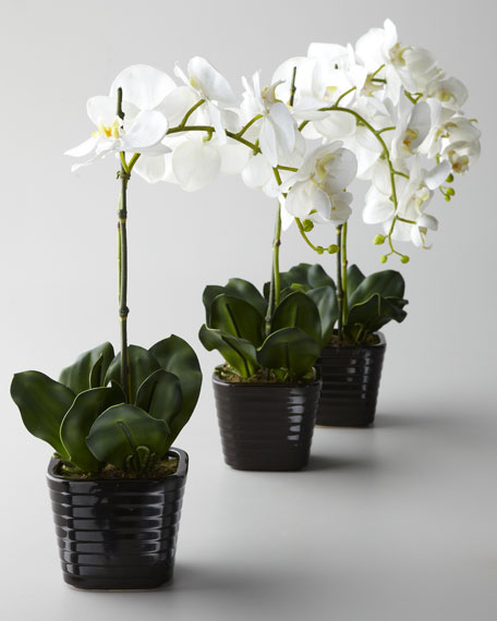 Three Faux Orchids