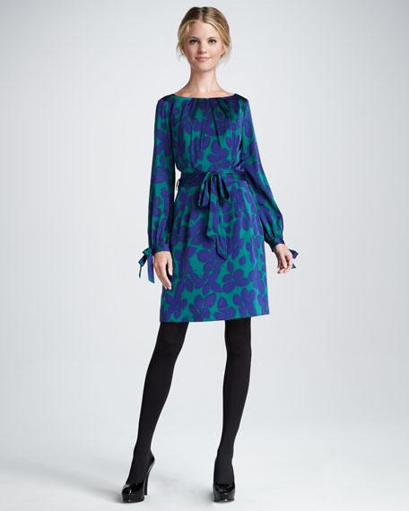 Clemie Long-Sleeve Tie Dress