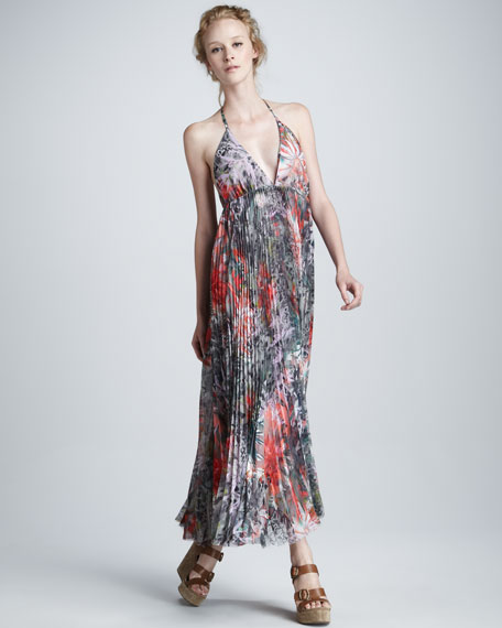Laney Floral-Print Maxi Dress
