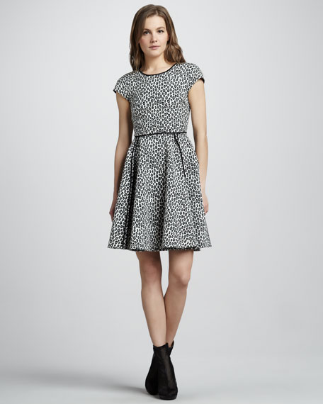 Iryna Printed Dress