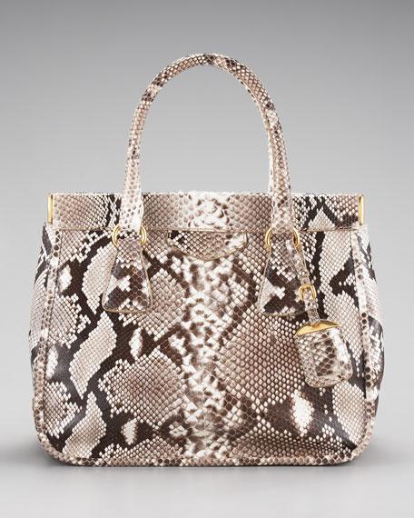 Prada Frame Python And Crocodile Leather Bag Prada Tote