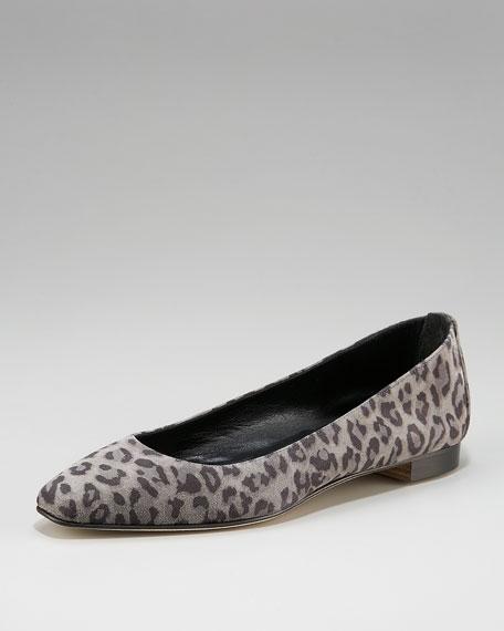 Leopard-Print Suede Skimmer