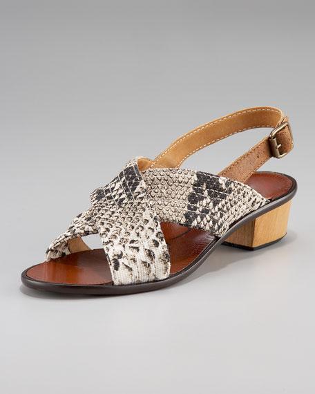 Lanvin Crisscross Slingback Sandal