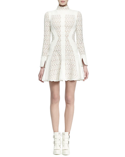 Paneled Lace Flared Dress