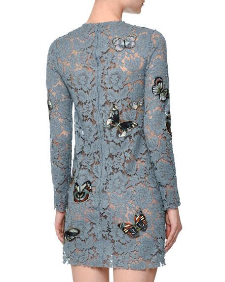 Butterfly-Embellished Lace Mini Dress, Pale Blue
