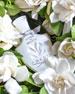 Love In White, 2.5 oz./ 75 mL