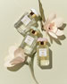 AERIN Lilac Path Eau de Parfum, 1.7 oz./ 50 mL