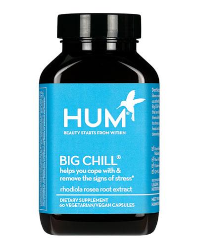 Big Chill® Supplement