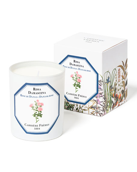 Carriere Freres Damask Rose Candle, 6.5 oz. / 184 g