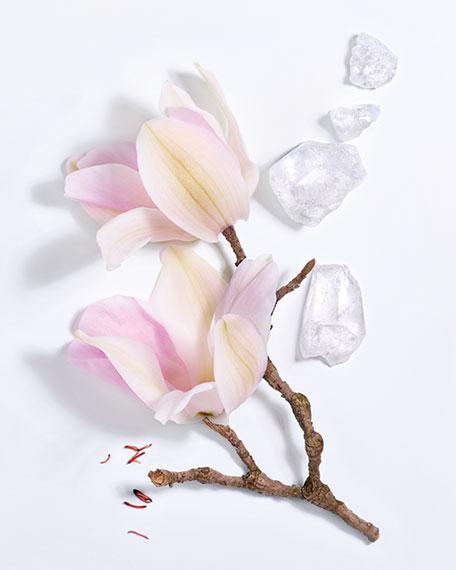 Lancome Maison Lancome Magnolia Rosae Eau de Parfum, 3.4 oz./ 100 mL