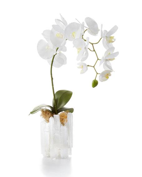 John-Richard Collection Selenite Orchid Faux Floral Arrangement