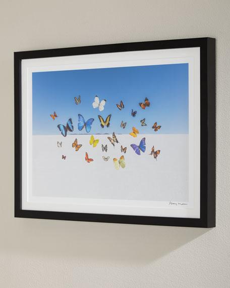 Gray Malin Butterflies