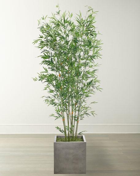 NDI Bamboo Arrangement in Cube