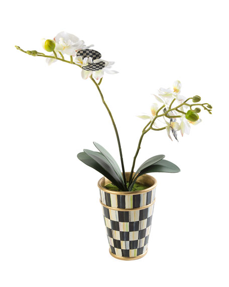 MacKenzie-Childs Potted Orchid