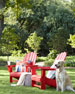 All Weather Coastal Adirondack Chair