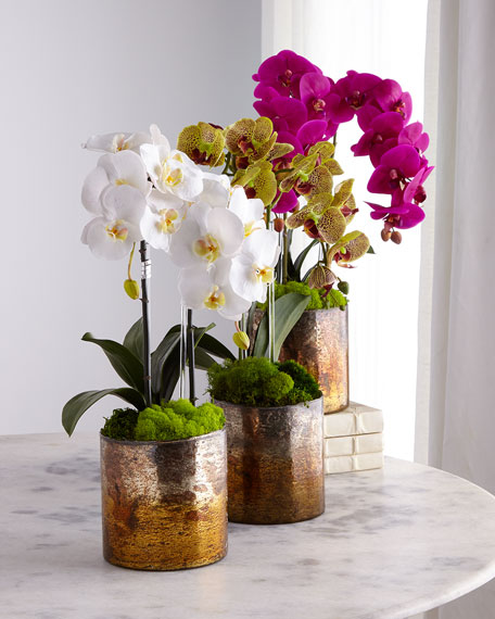 T&C Floral Company Orchids in Bronze Mercury Container
