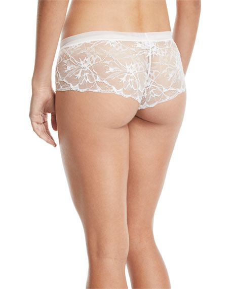 Wisteria Lace Boyshort Briefs