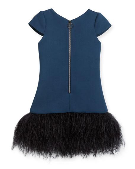 Feather Flounce Drop-Waist Dress, Size 4-6X
