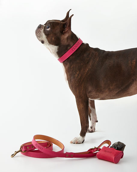 Graphic Image Personalized Petite Dog Collar