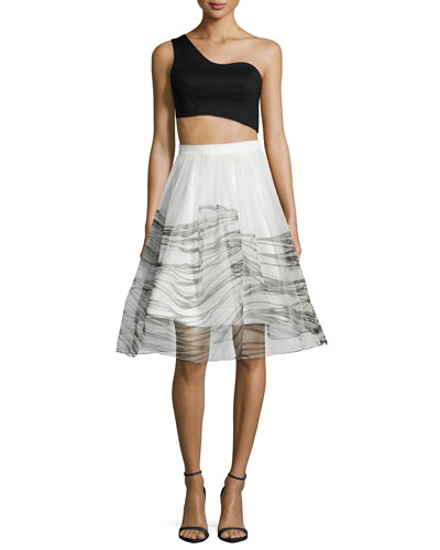 Liraz Asymmetric Crop Top & Anselmo Organza Skirt