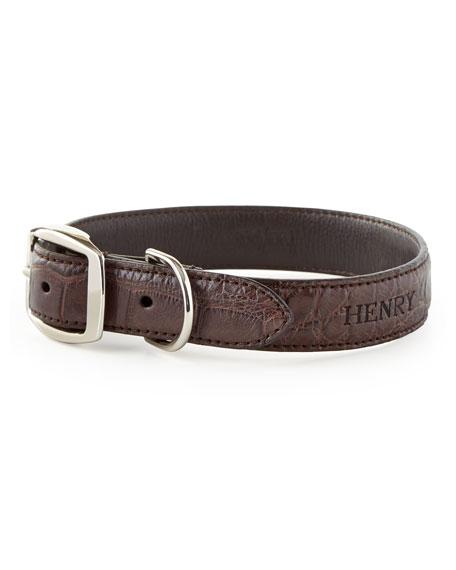 Medium Alligator Dog Collar