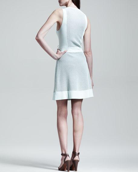Diem Paneled Knit Dress