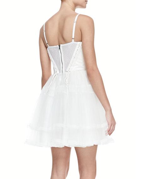 Rizzo Lambskin &  Organza Flare Dress
