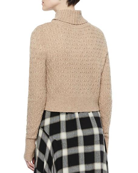Jeannie Long-Sleeve Turtleneck Sweater