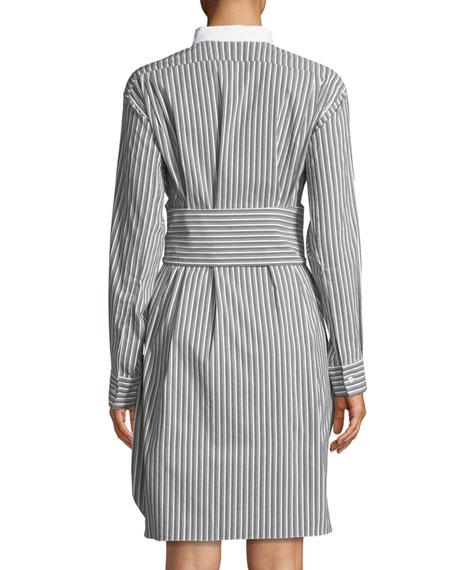 Plastron Stripe Button-Front Cotton Poplin Shirtdress