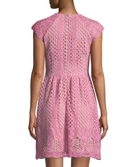 Mori Lace A-Line Mini Dress