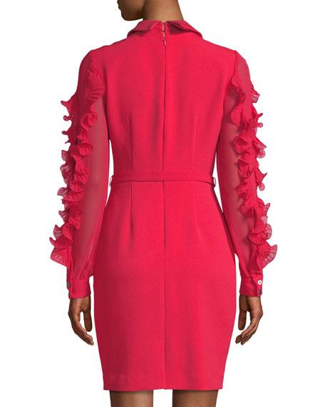 Collared Sheath Dress w/ Pleated Ruffle Sleeves